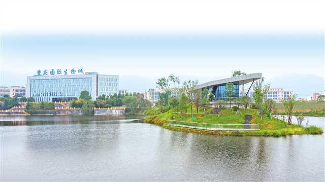 重庆巴南生物医药产业园